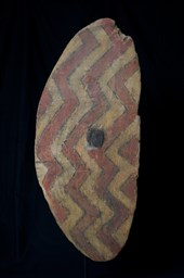 ABORIGINAL RAINFOREST SHIELD